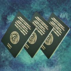 Passeports ordinaires biométriques demandés par les usagers en cours de traitement.